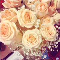 想要��的��� 唯美香��玫瑰�^